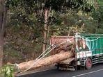 ilustrasi-kecelakaan-tertimpa-muatan-kayu-mobil-truk.jpg