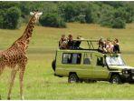 ilustrasi-safari-di-afrika_20180921_142307.jpg