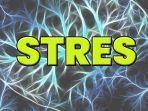 ilustrasi-stres-inilah-tanda-sistem-imun-melemah.jpg