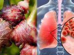 jahe-merah-obat-untuk-lawan-wabah-virus-corona.jpg