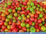 jelang-natal-harga-tomat-di-pasar-ini-turun-jadi-rp-10-ribu-per-kilogram-2.jpg