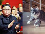 kim-jong-un-perintahkan-semua-kucing-dan-burung-merpati-dimusnahkan-121212.jpg