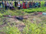 lokasi-perkebunan-ditemukannya-satu-keluarga-tewas-tersenagt-listrik-di-sawah.jpg