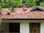 mahasiswa-india-mengikuti-kelas-online-dari-atap-rumah.jpg