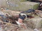 mayat-pria-tersangkut-di-beton-pemecah-air-sekira-berusia-30-tahun-ini-ciri-ciri-korban.jpg