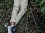 mayat-tanpa-kepala-ditemukan-di-kalsel-polisi-masih-cari-bagian-tubuh-yang-hilang.jpg