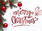 merry-christmas-33r2.jpg