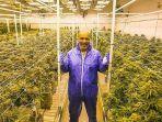 mike-tyson-berpose-di-pertanian-cannabis-miliknya-di-tyson-ranch-california.jpg
