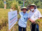 panen-raya-program-makmur-agro-solution-di-kabupaten-bolmong.jpg