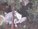 pesawat-rimbun-air-ditemukan-di-wilayah-gunung-wabu-sugapa-intan-jaya-papua.jpg