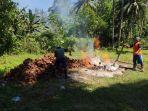 petani-kelapa-di-desa-minanga-kecamatan-pusomaen-kabupaten-minahasa-tenggara-mitrafgfgdfg.jpg