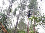 petugas-pln-up3-manado-melakukan-perbaikan-jaringan-listrik.jpg