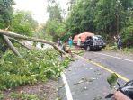 pohon-tumbang-di-jalan-raya-desa-motolohu-kecamatan-helumo-kabupaten-bolsel-rabu-332021.jpg