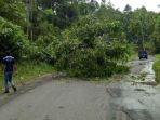pohon-tumbang-menimpa-badan-jalan_20170921_125713.jpg