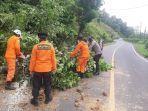pohon-tumbang-yang-menghalangi-jalan-trans-sulawesi-di-kabupaten-minsel-5757.jpg
