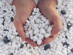 popcorn-beach-13212.jpg