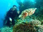 potensi-alam-bawah-laut-di-likupang.jpg