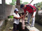 ratusan-hewan-ternak-babi-di-kota-kotamobagu-di-vaksin-anti-virus-hog-cholera_20171022_202243.jpg