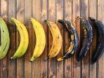 rupa-rupa-warna-pisang.jpg
