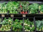 sayuran-berdaun-hijau.jpg