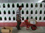 seorang-petugas-mengatur-logistik-pemilu-567658.jpg