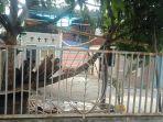 stt-elohim-di-kelurahan-airmadidi-atas-kabupaten-minahasa-utara-provinsi-sulut.jpg