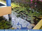 taman-air-kalasey-memberikan-pelayanan-kepuasan-pengunjung.jpg
