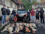 timsus-maleo-temukan-21-anjing-dalam-keadaan-mati-1212.jpg
