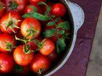 tomat8387374.jpg