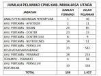 total-pelamar-cpns-minut8678678678.jpg