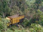truk-colt-diesel-terjun-ke-jurang-5556.jpg