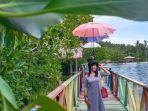 wisata-mangrove-yang-dikelola-badan-usaha-milik-desa-bumdes-transpatoa.jpg