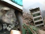 zhu-jianquang-ketika-ditemukan-di-bawah-reruntuhan-desa-pengzhou-provinsi-sichuan-china.jpg