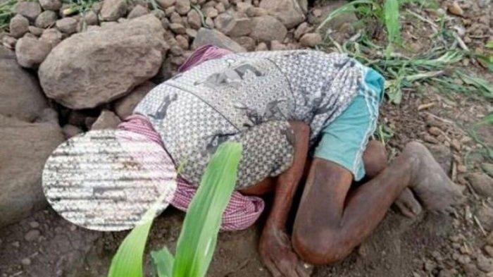 Viral Potret Kakek Meninggal Meringkuk di Atas Batu karena Kelaparan, Wagub Sulsel Naik Pitam
