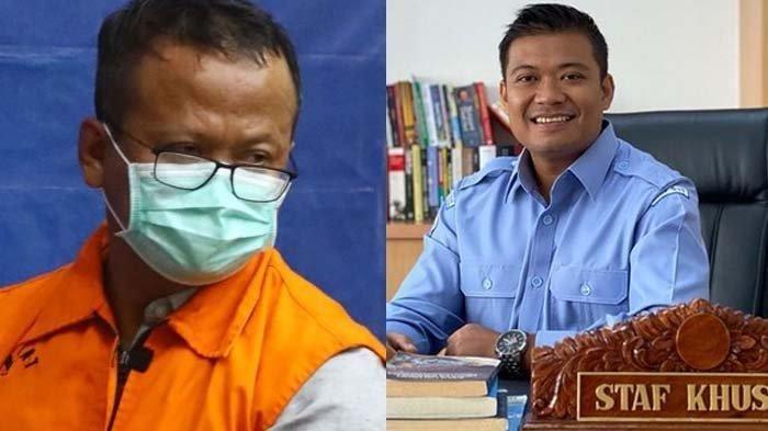 POPULER Inilah Andreau Pribadi, Stafsus Edhy Prabowo yang Berperan Penting dalam Suap Benih Lobster