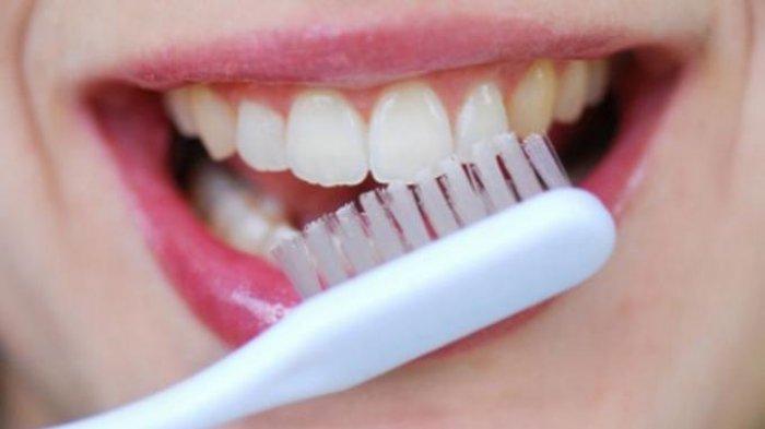 Jangan Asal Sikat Gigi, Bisa Beresiko Terkena Kanker Mulut, Ikuti 6 Cara Bersihkan Area Mulut Ini