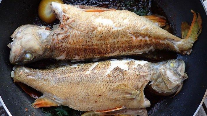 Ilustrasi - Istri di Bima siram suami dengan minyak panas karena diminta goreng ikan.