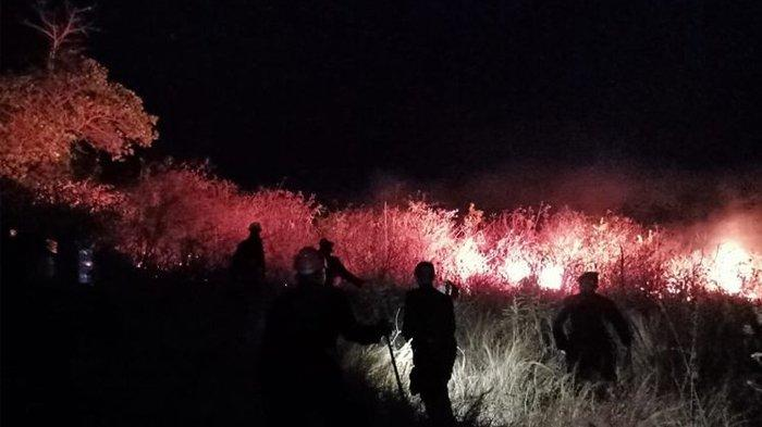 5 Hektar Lahan Kering di Lombok Utara, NTB, Berhasil Dipadamkan Namun Api Kembali Nyala