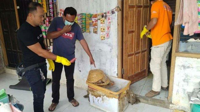 Mayat Wanita di NTB Ditemukan Busuk Termutilasi, Potongan Tubuh Disimpan di Kulkas & Box Styrofoam