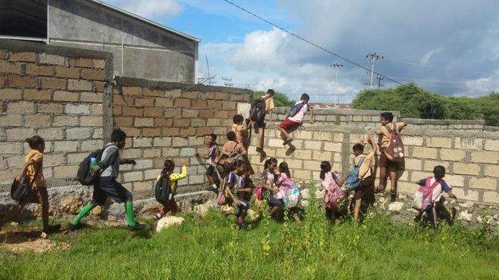 Ratusan Bocah SD di Kupang Panjat Tembok 4 Meter Tiap Hari, Akses Sekolah Tertutup Rumah Pengusaha
