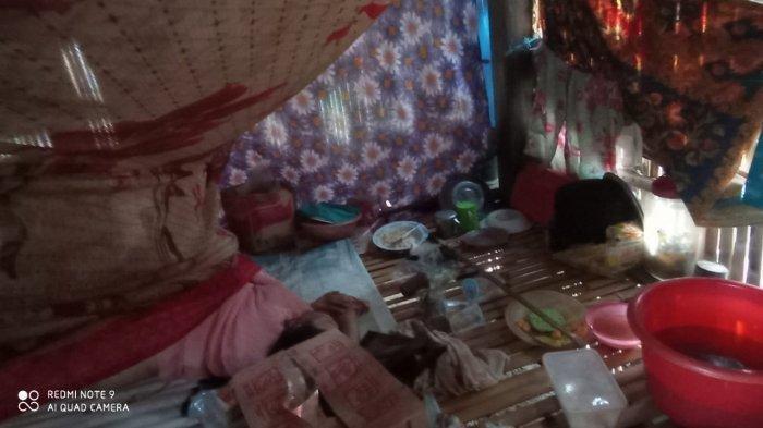 Tubuh Kaku Nenek di Sulsel Ditemukan di Kolong Rumahnya, Sudah Jadi Mayat saat Sepupu Mau Beri Makan