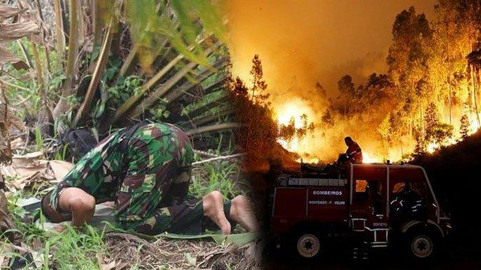 Viral Prajurit TNI Sholat Beralaskan Daun Sawit di Tengah Kebakaran Hutan Calon Ibu Kota Indonesia