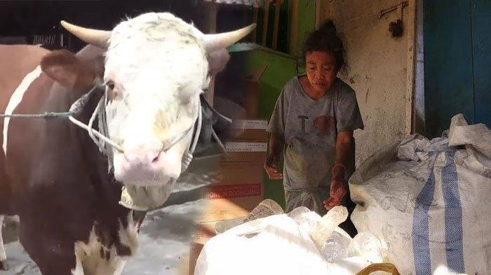 Viral Kisah Haru Nenek Sahnun, Pemulung di Mataram, 5 Tahun Nabung Demi Beli Sapi Kurban Idul Adha