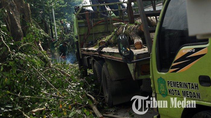 Berita Foto: Dinas Kebersihan dan Pertamanan Pangkas dan Tebang Pohon Keropos di Medan - 04020202_pangkas_pohon_danil_siregar-1.jpg