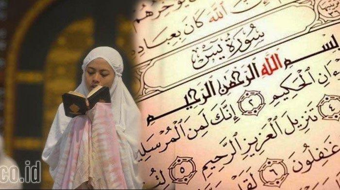 Baca Surat Yasin Lengkap Ayat 1-83, Serta Doa Setelah Baca Surat Yasin Serta Terjemahannya