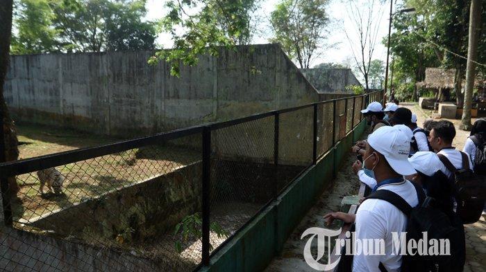 Peserta Bimbingan Teknis (Bimtek) Kementerian Pariwisata dan Ekonomi Kreatif (Kemenparekraf) tentang penguatan promosi wisata saat berkunjung ke Medan Zoo, Kamis (18/2/2021). Bimtek yang berlangsung dari 17-18 Februari tersebut, merangkul para komunitas fotografer dan videografer di Sumatera Utara, dalam upaya mengenalkan pariwisata dengan menerapkan protokol kesehatan.