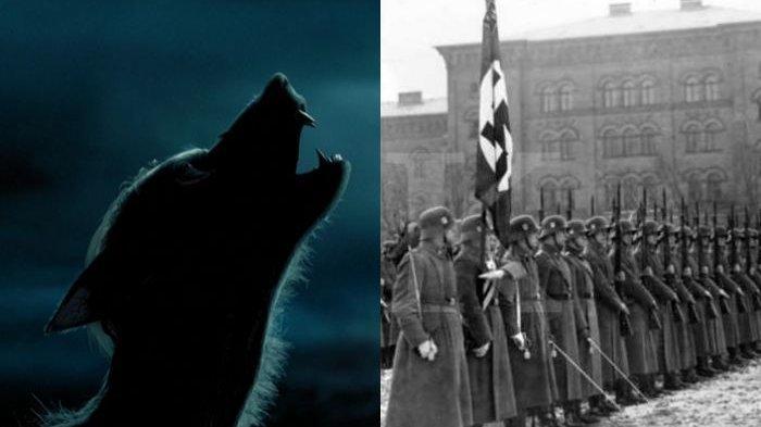 Rasa Iba Jelang Mati, Ternyata Hitler Punya Pasukan Manusia Serigala, Kunci Sangarnya Nazi di PD II