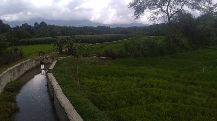 Program RJIT dari Kementerian Pertanian Bantu Petani Desa Pinagar Tapsel