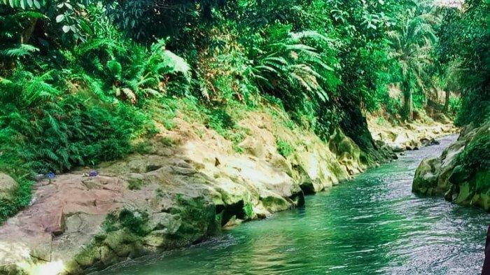 Tangkahan Lobu, Pemandian Alam yang Dikelilingi Pepohonan Hijau dan Masih Alami