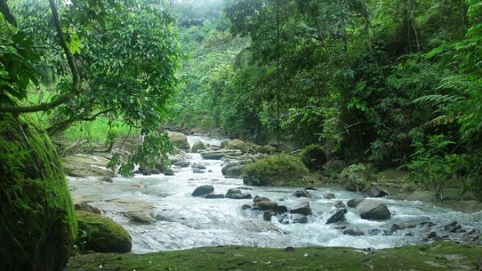 Air Terjun Lau Berte